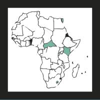 cucaracha-africana