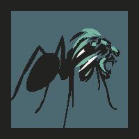hormigas-leon