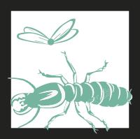 termitas-aladas