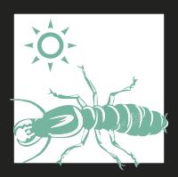 termitas-madera-seca