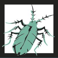 cucaracha-negra