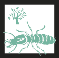 termitas-formosa