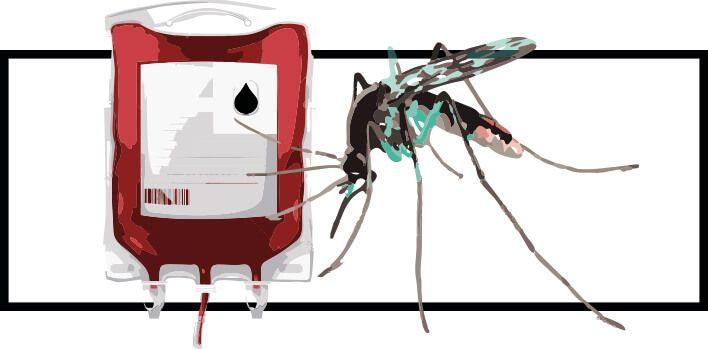 como evitar que te pique el mosquito
